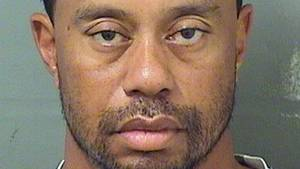 Tiger Woods siger, at der ikke var alkohol involveret. (Foto: Palm Beach County Sheriff's Office)