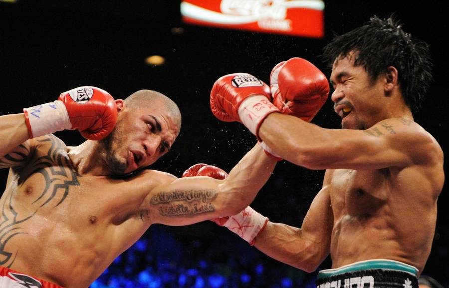 Miguel Cotto (t.v.) bokser lørdag aften i Madison Square Garden. (Foto: AP)