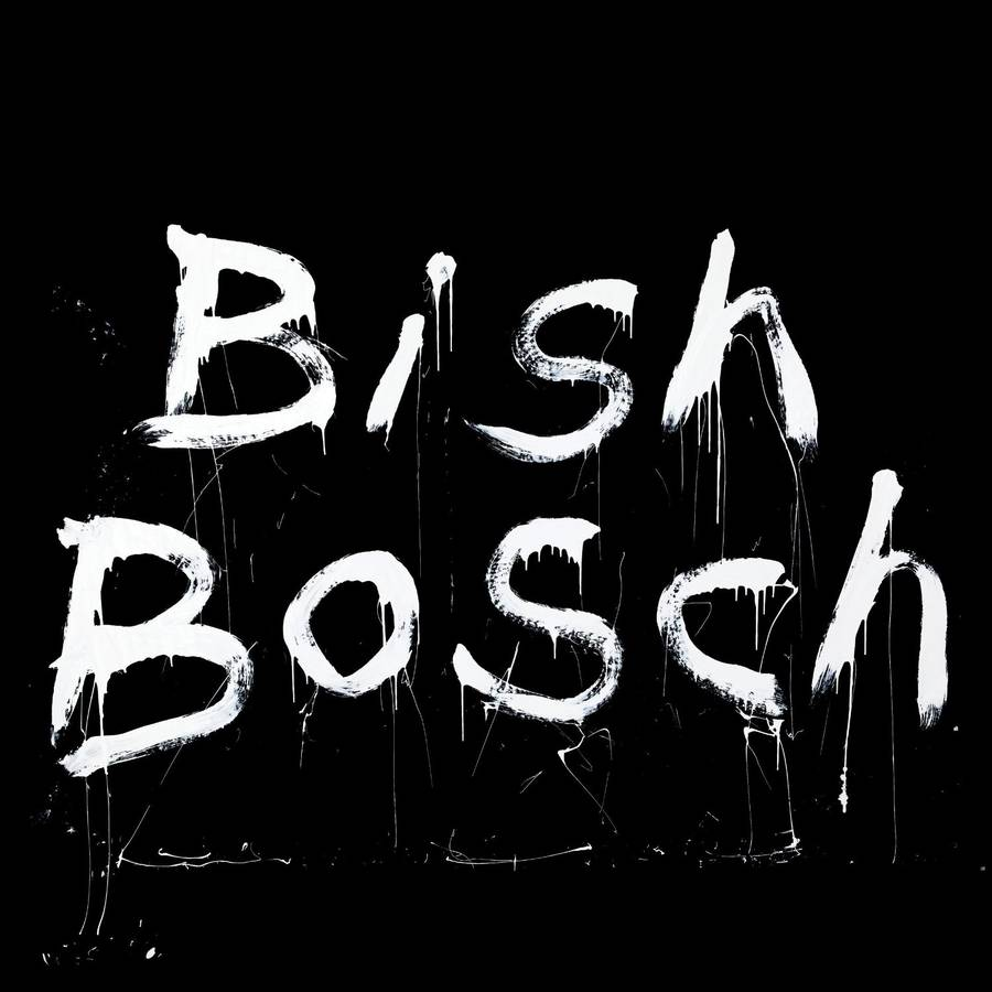 Coveret til Scott Walkers aktuelle album, 'Bish Bosch'.