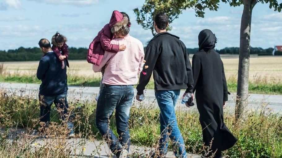 flygtninge rejser hjem