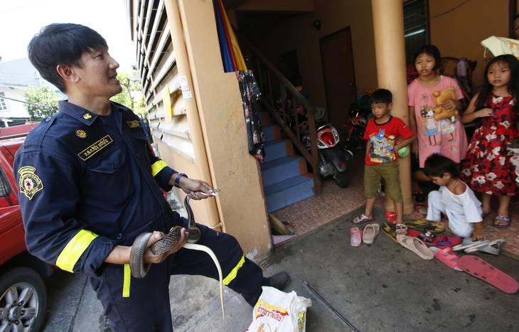 bliv escort pige thai massage brande