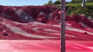 Kunstner overmaler det forårsgrønne græs med akrylmaling. Privatfoto