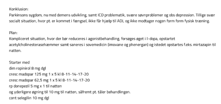 Screenshot fra journalen