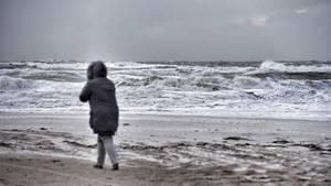 Mandag vil byde på regn og blæst i hele landet. Værst bliver det dog i Nordjylland. Arkivfoto: René Schütze