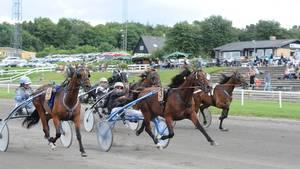 Race Cowboylands senest sejr var netop på banen i Aarhus. (Foto: Ole Hindby)