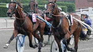 Race Cowboyland og Pioneer F H. (Arkivfoto: Martin Timm Holmstav)