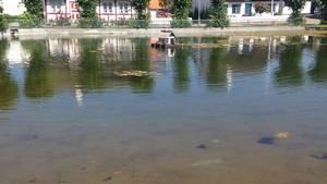 danmarks længste å