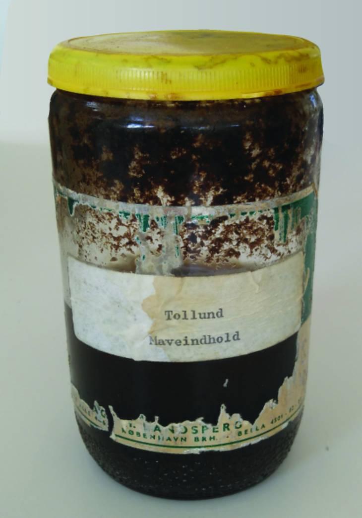 Det originale honningglas med indholdet fra Tollundmandens tyktarm. Først da de nye undersøgelser skulle udføres, blev det overført til en mere sikker beholder. Foto: Museum Silkeborg