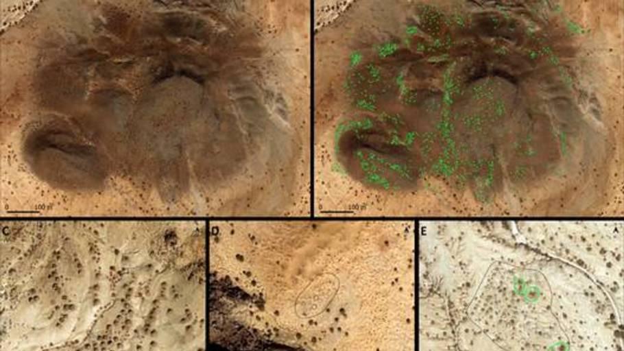 Nogle af de sattelitbilleder, som blev brugt til at kortlægge gravene. (Foto: Stefano et al./PLOS One 2021)