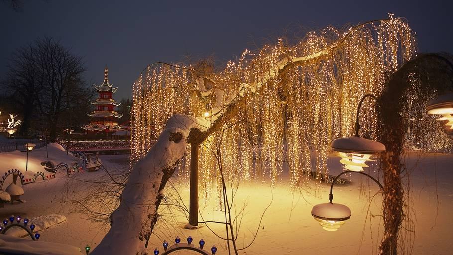 07ac4a5cdd6 Julekugler og julelys vil kaste glans over den gamle have og sprede  julehygge for gæsterne.