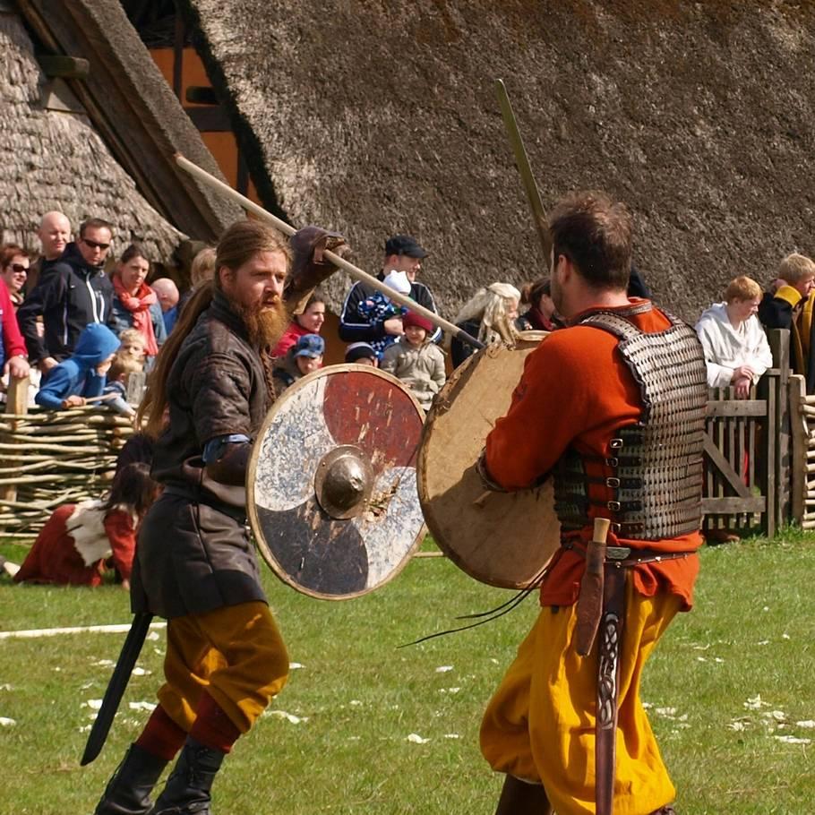 danske vikinger csgo betting