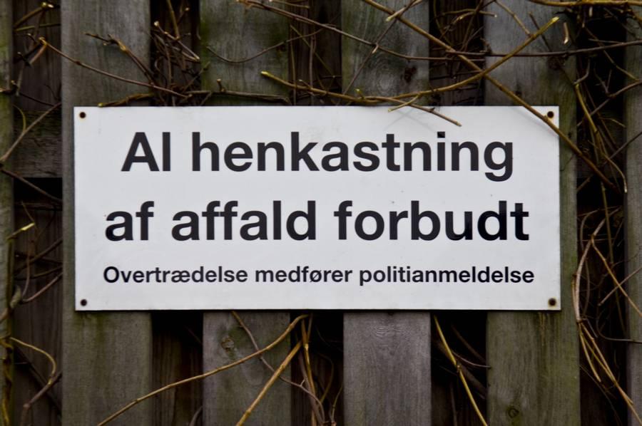 De danske skove flyder med erhvervsaffald. (Arkivfoto/Søren Sielemann/Polfoto)