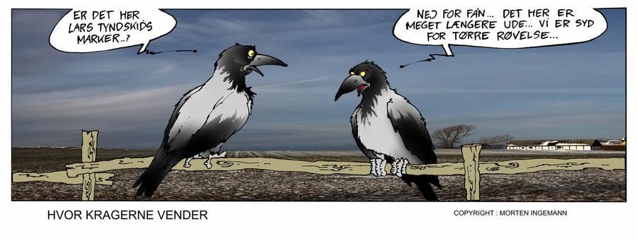 hvor kragerne vender