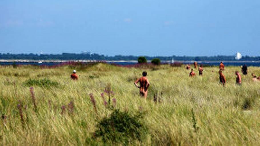 free sex dk nudist strand sjælland