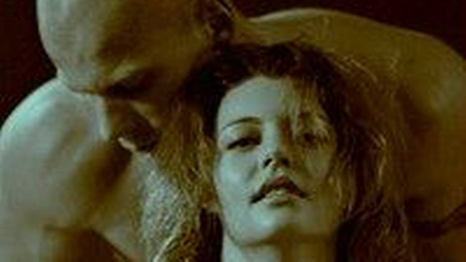 Bedste anal sex positioner for kvinder