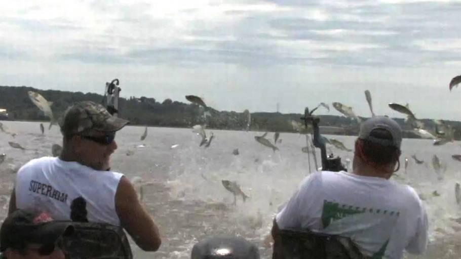 TV  Skyder tonsvis af fisk med bue og pil – Ekstra Bladet 03ef9e8fd2fa7