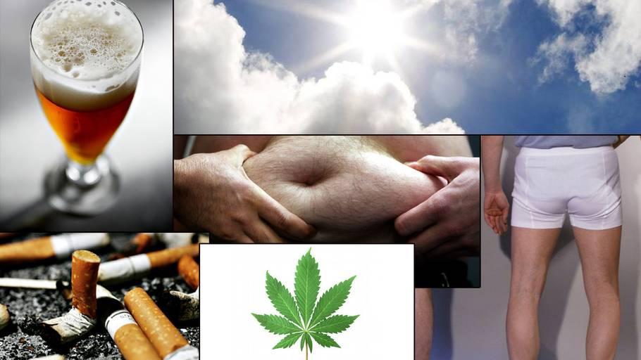 fødevarer der producerer sæd